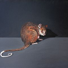 Zoe Tweedale