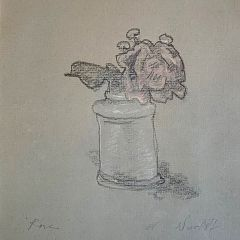Anne Wienholt